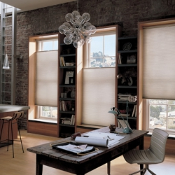 Cellular-Shades-Duette-Honeycomb-Shades-by-
